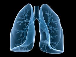 Lungs Breathing