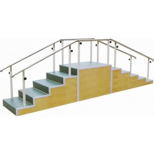Physical Therapy Walking Training Stairs